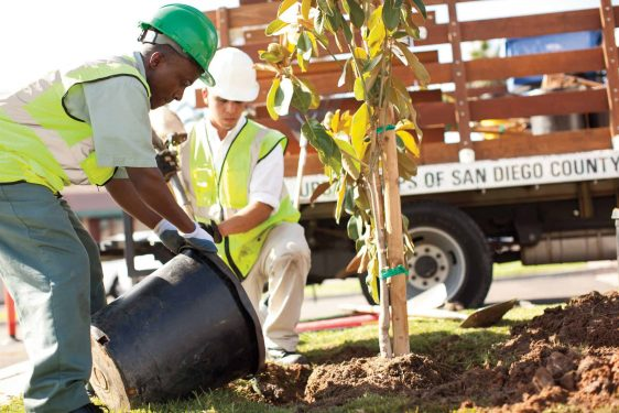Urban Corps San Diego County Environmental Tree Planning